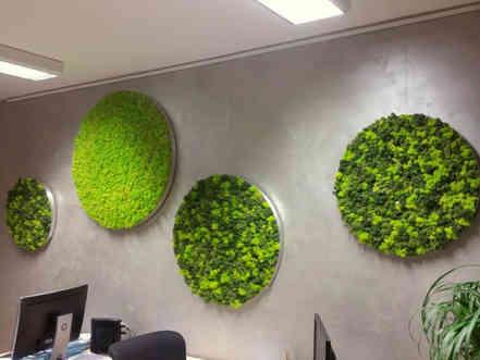 Moss & Work
