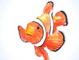 Procurando Nemo: um sujeito de direitos
