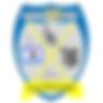 sydney Pagon STEM Academy.png