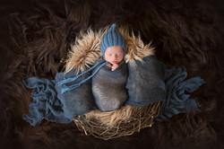 newborn photography baby 11 days old