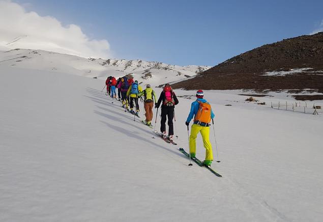 Ski austiek
