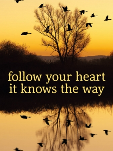 Post card - Follow your heart