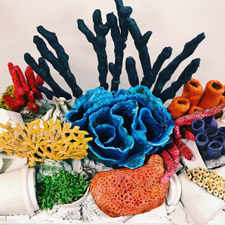 Coral Reef Pollution