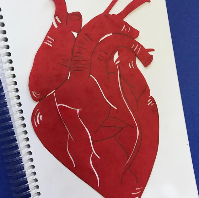 Cut paper heart- by Advanced Art student