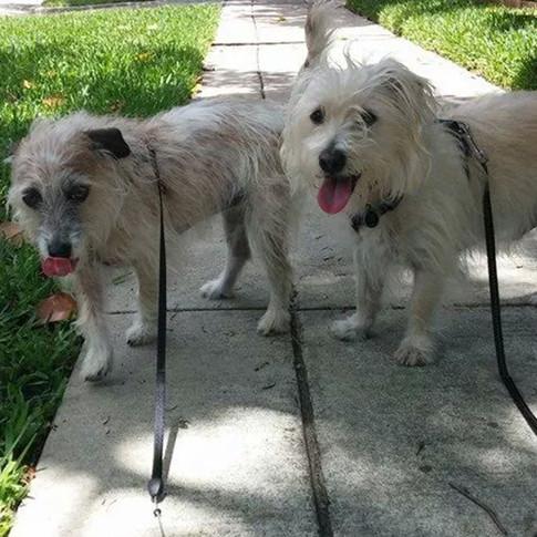 Gretel & Barkley