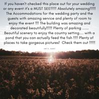 Amy H - Wedding Guest
