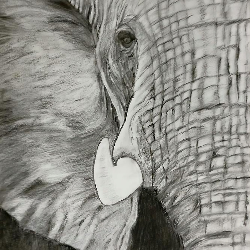 Charcoal and Graphite Painting Workshop