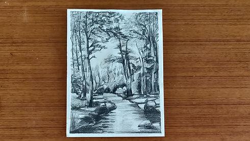 forest_tn.jpg