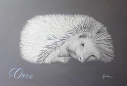 'Oreo'