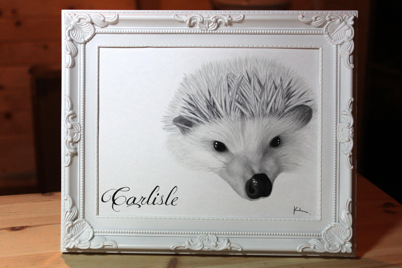 'Carlisle'