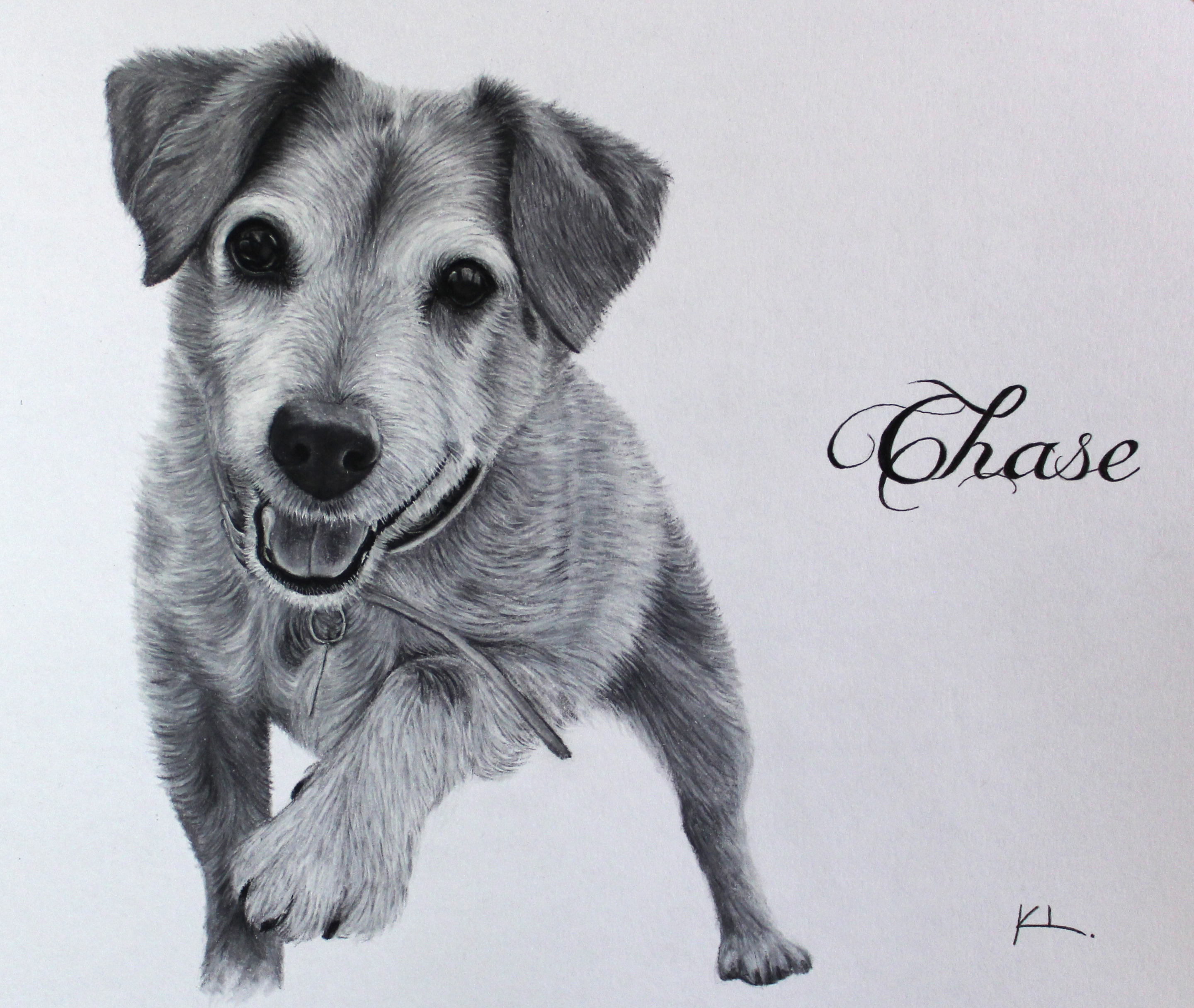 'Chase'