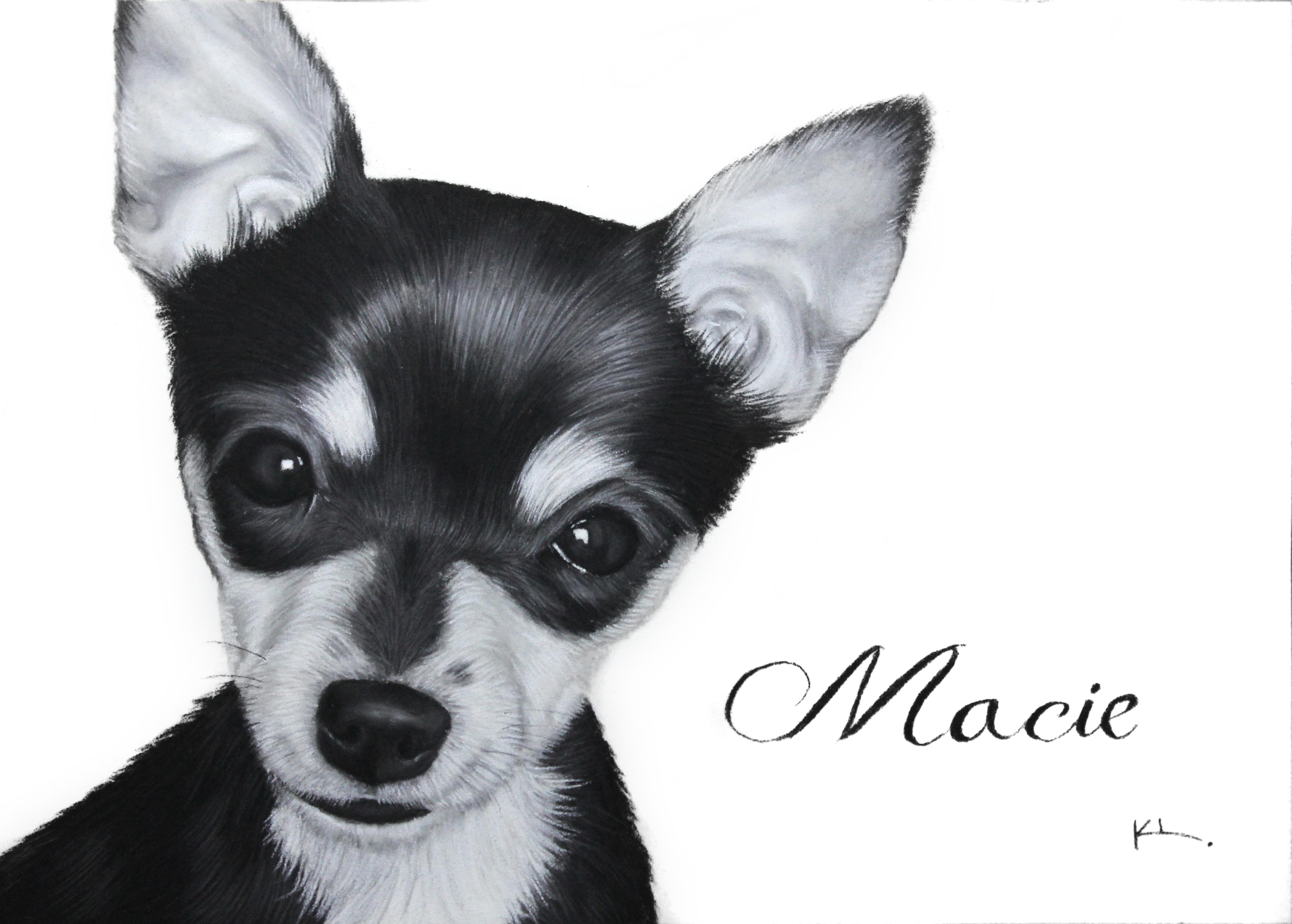 'Macie'