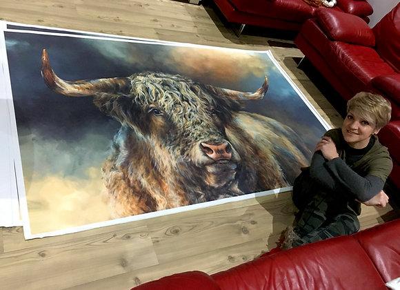 'Grand Kyloe Bull' XX-Large Print