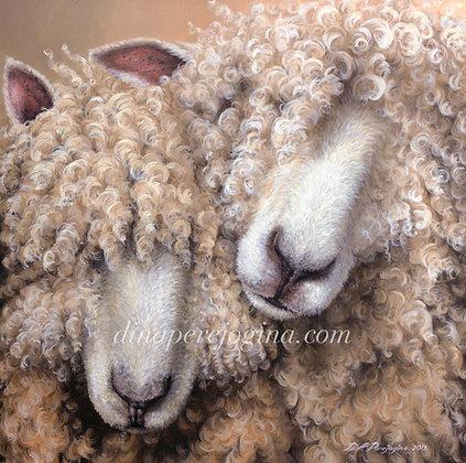 'Me and Ewe'