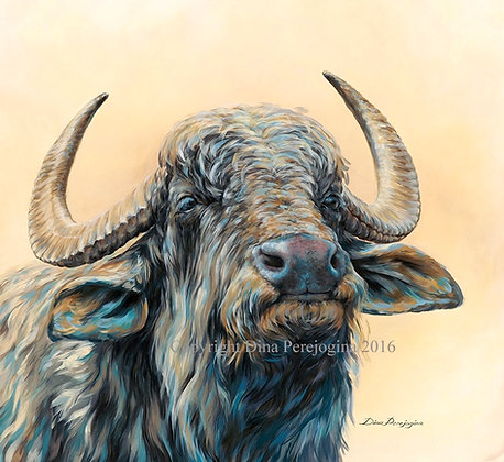 'Water Buffalo'