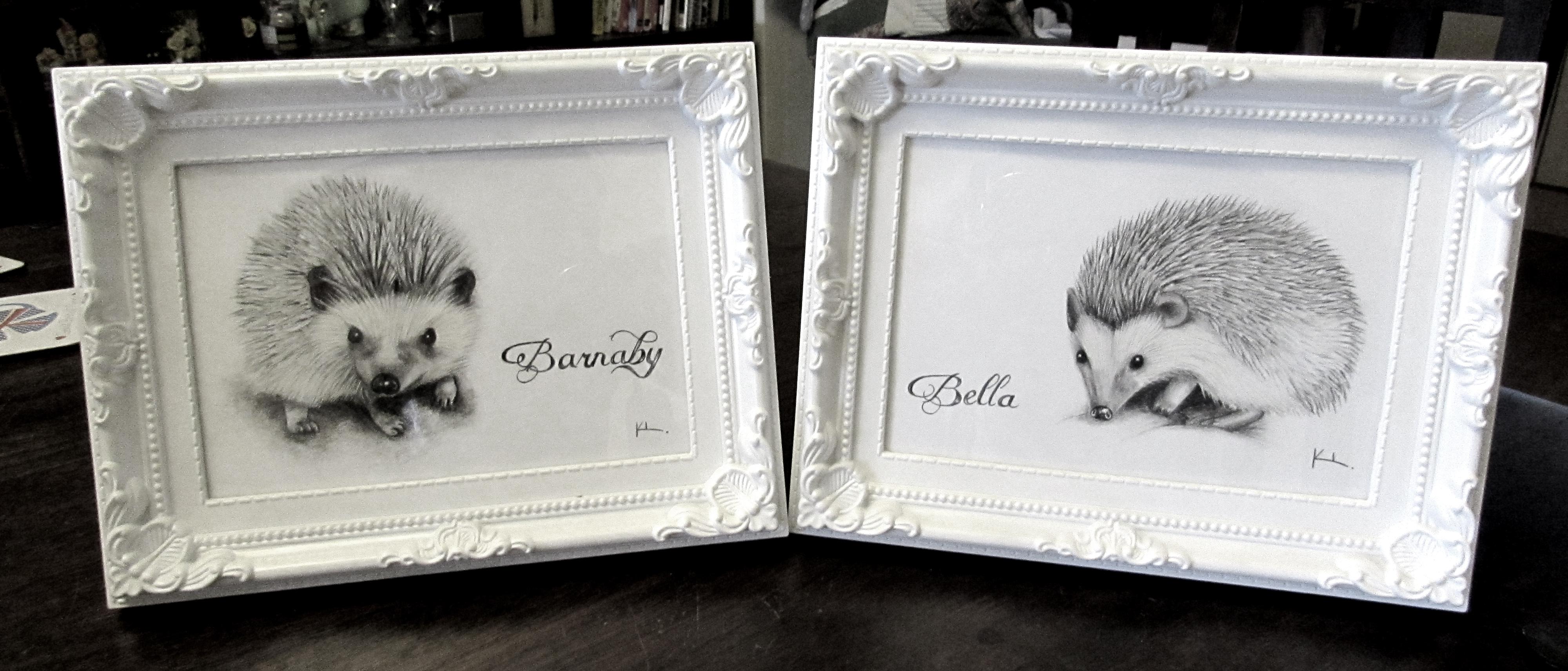 'Bella and Barnaby'