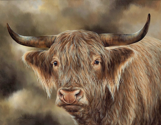 'Winsome Bull'
