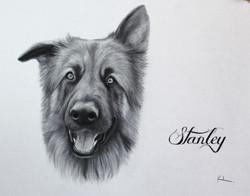 'Stanley'