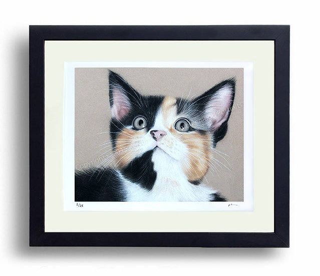 Limited Edition Signed Giclée Print Kitten
