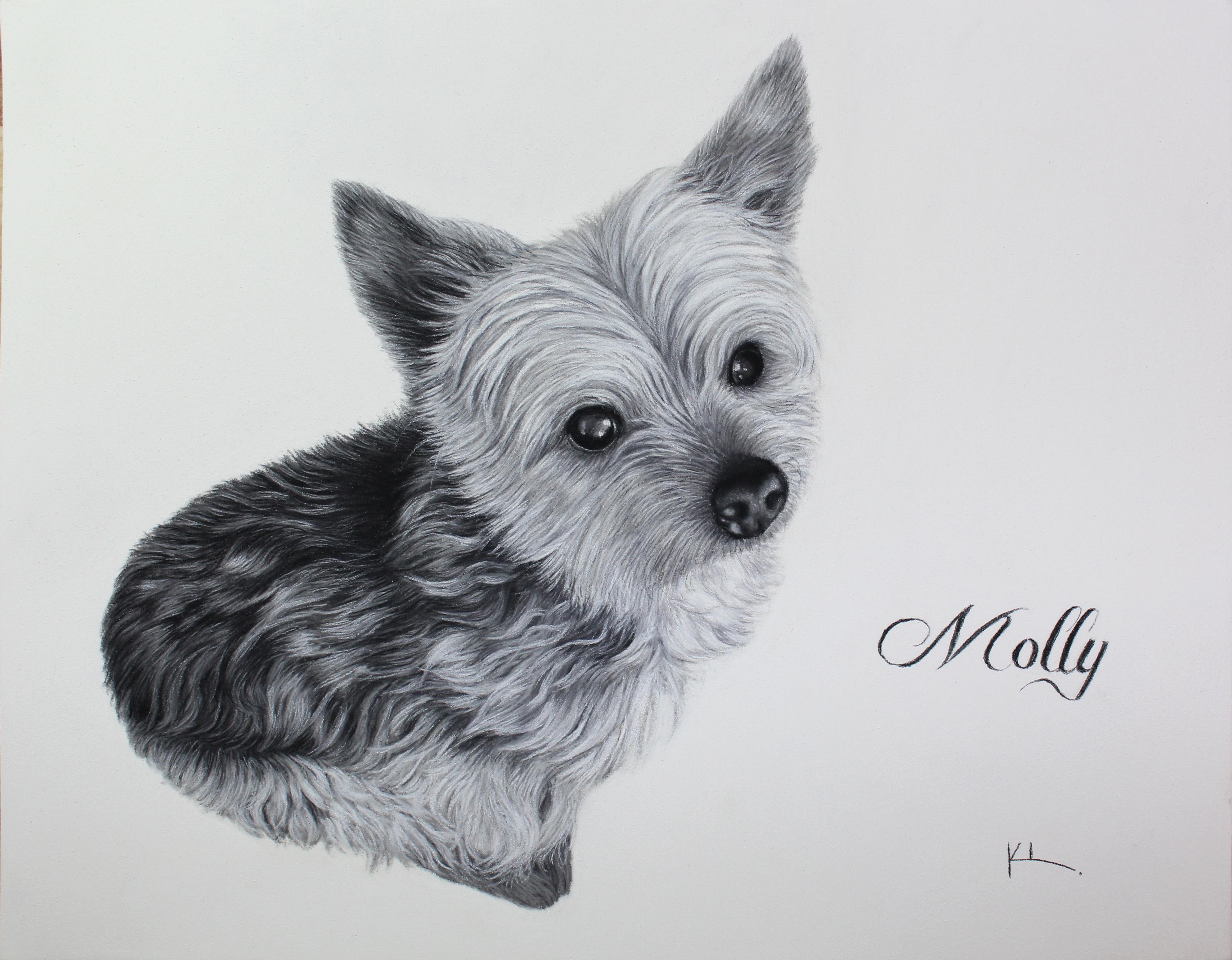 'Molly'