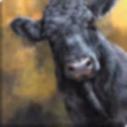 DINA_Aberdeen Angus_80x80cm_canvas.jpg
