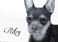 'Riley'