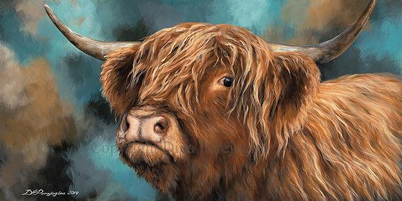 'Highland Heifer'