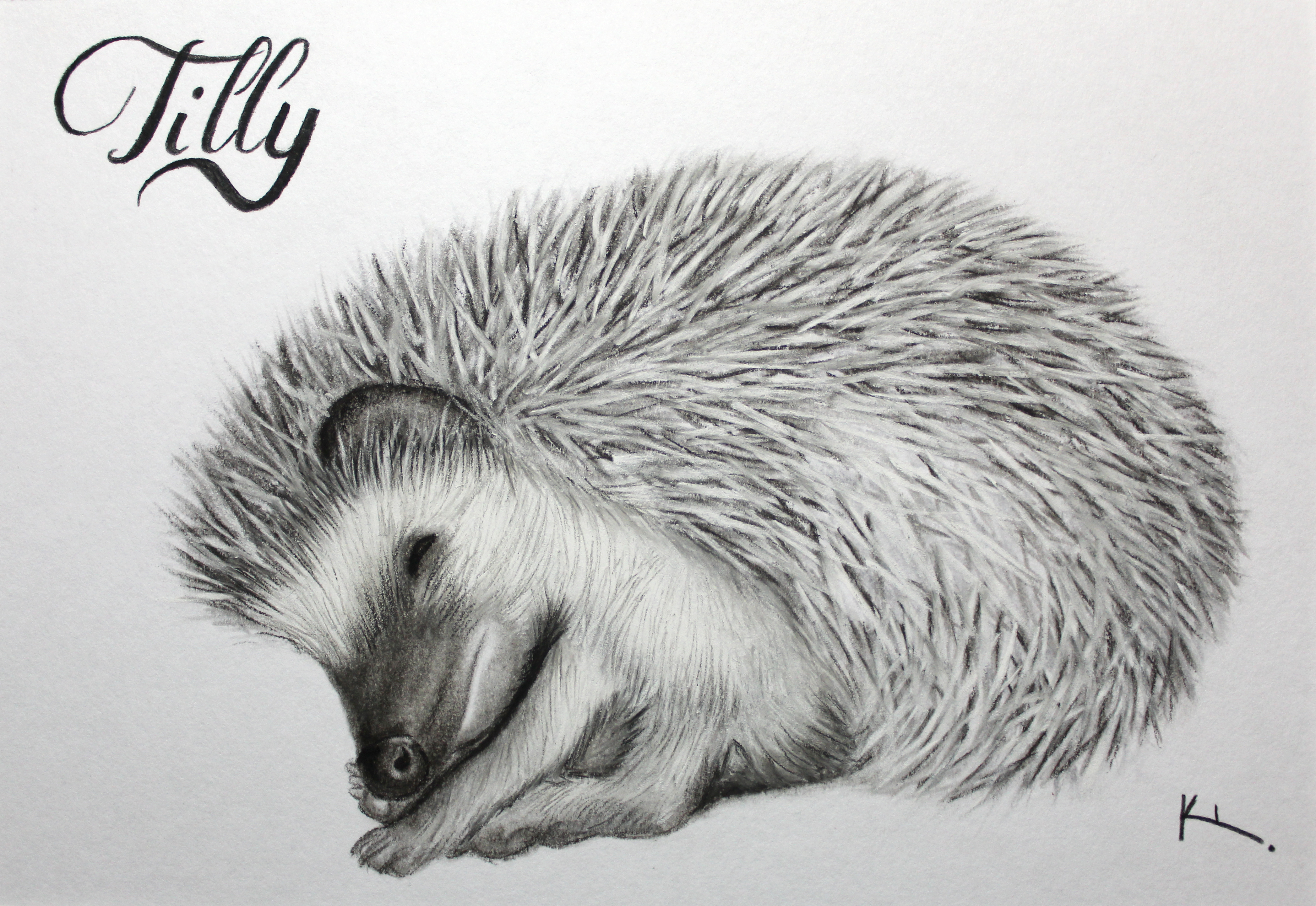 'Tilly'
