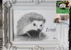 'Ernest'