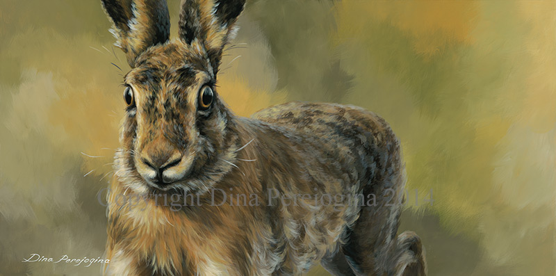 'Mid Air Hare'