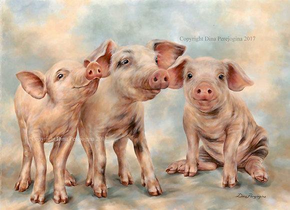 'Piglets Presence'