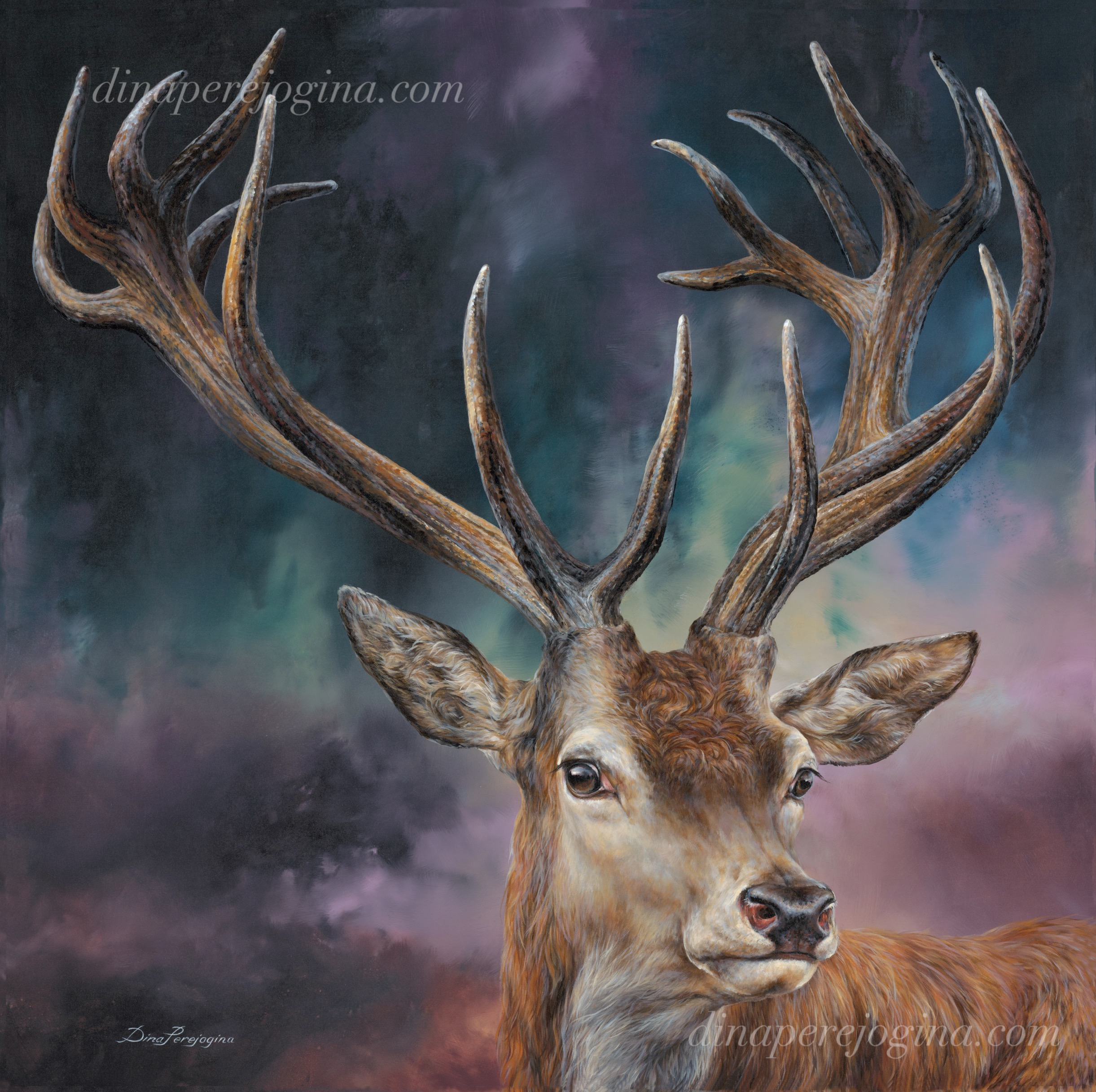"'Raidient Deer' 40"" x40"""