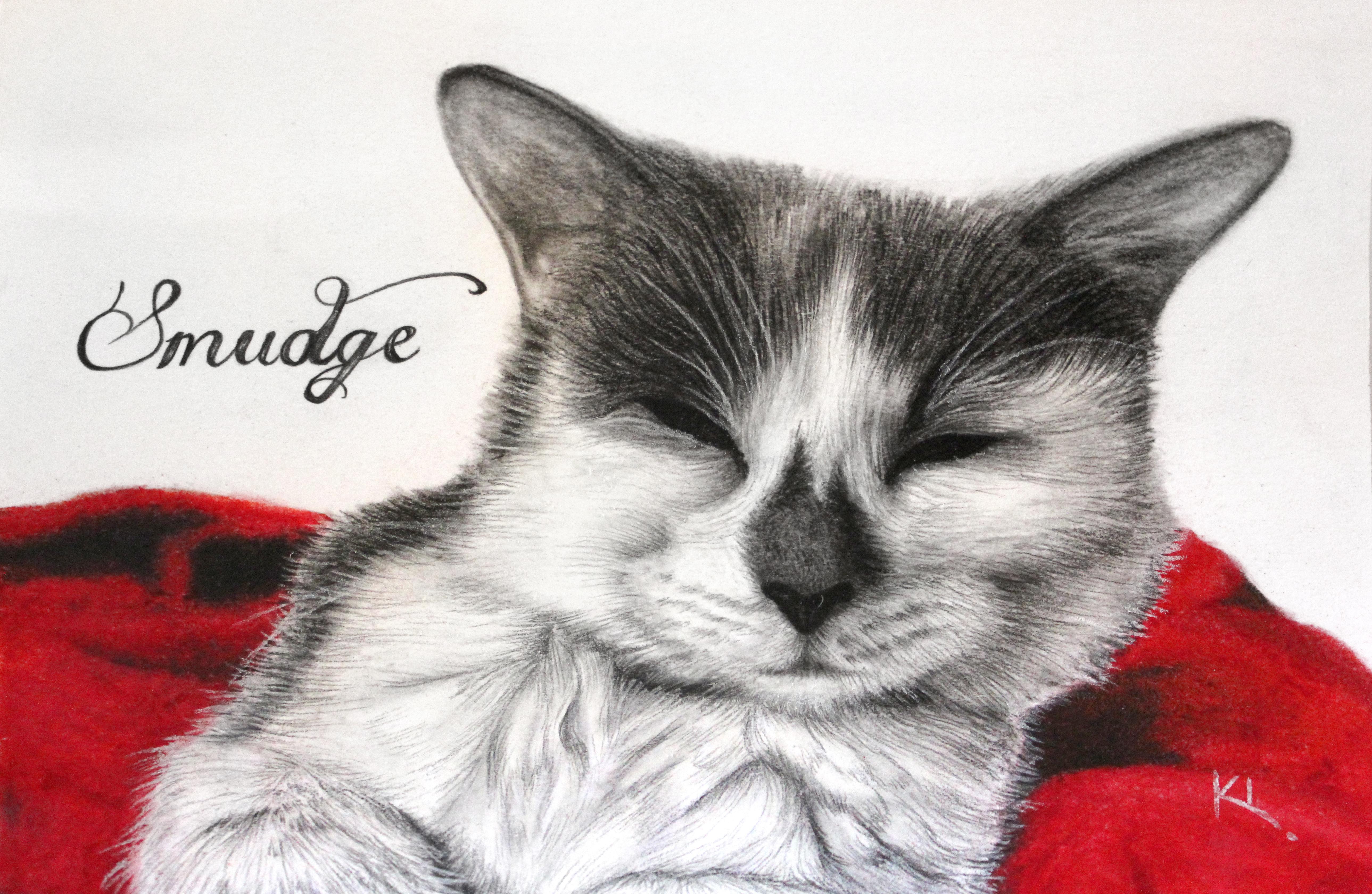 'Smudge'
