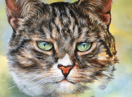 Billy the Cat portrait commission.