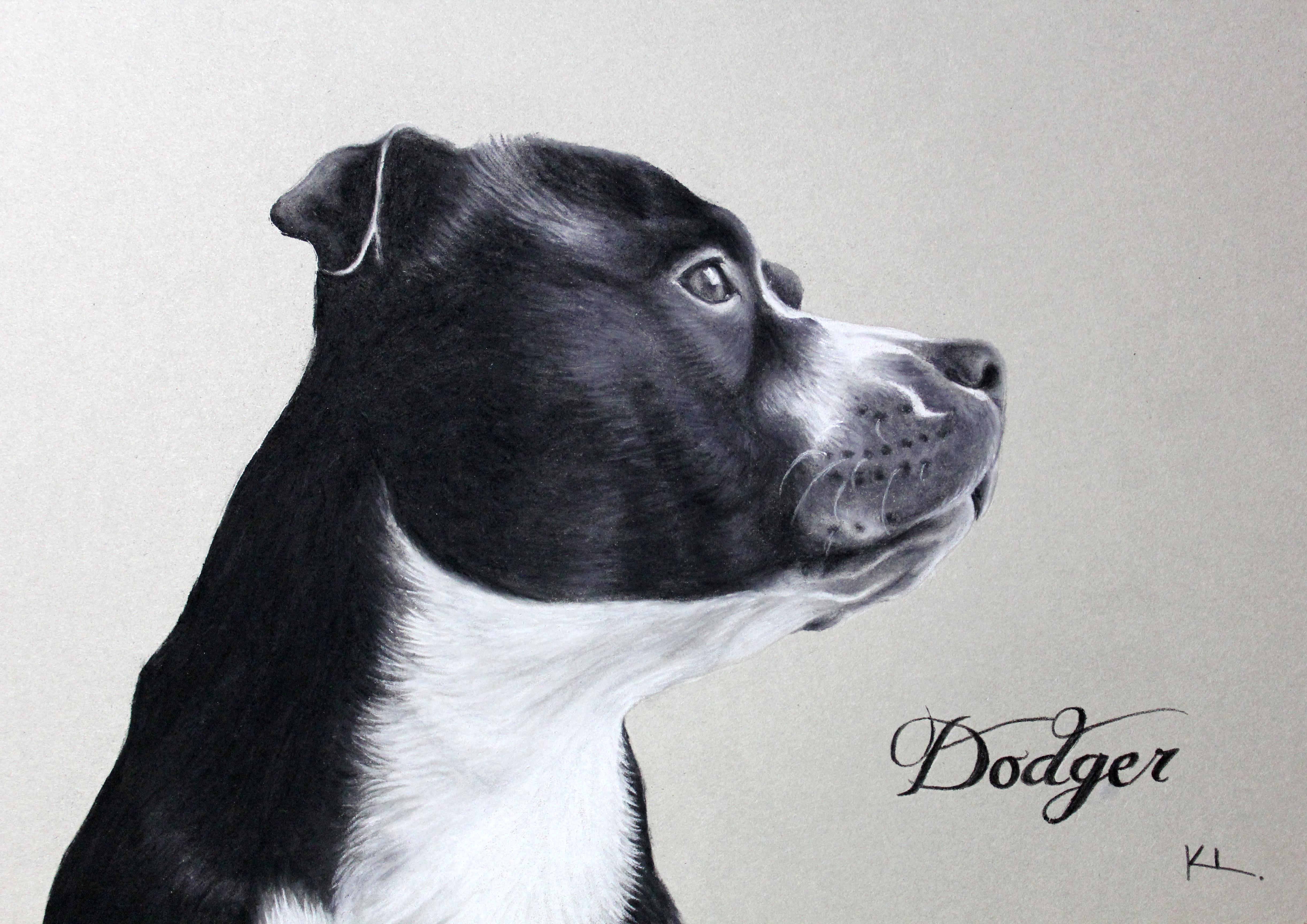 'Dodger'