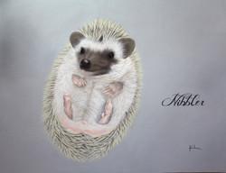 'Nibbler'
