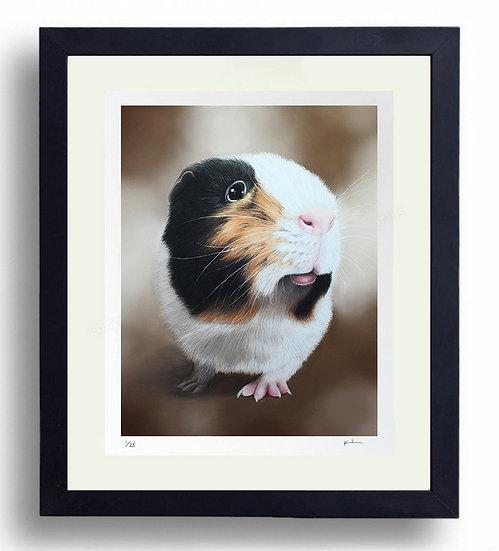 Limited Edition Signed Giclée Print Guinea Pig