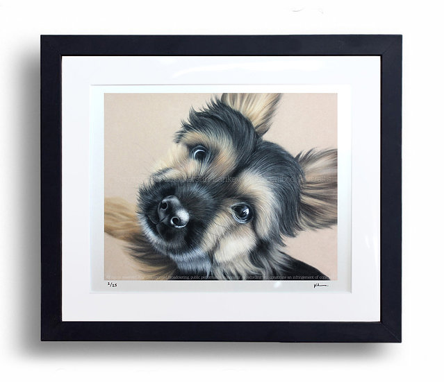 Limited Edition Signed Giclée Print Yorkie Pup