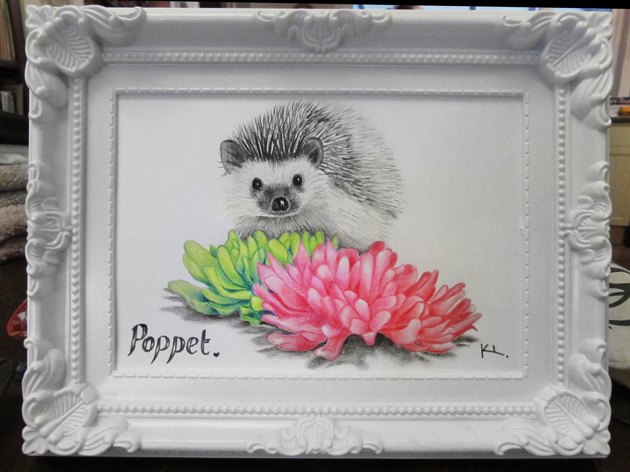 'Poppet'