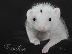'Conker'