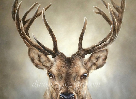 Stag Presence (SOLD)