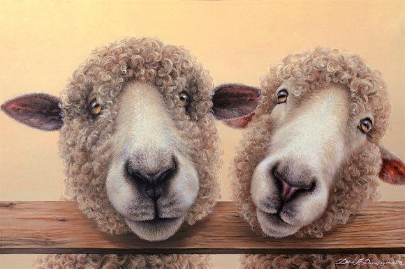 'Double Ewe'