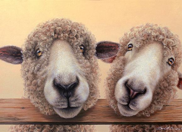 Double Ewe