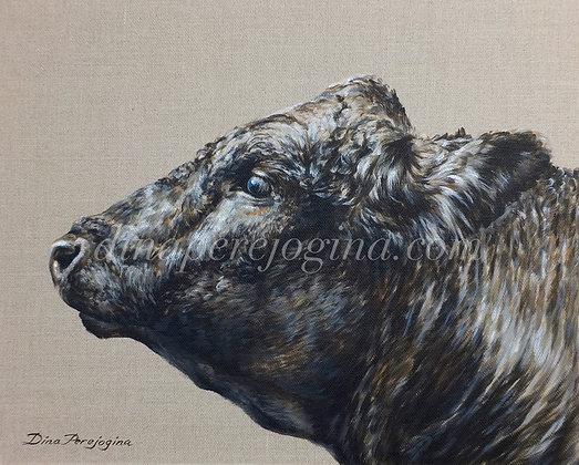 'Black Bull'