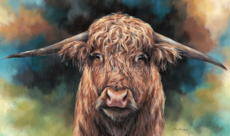 'Highland Taurus'