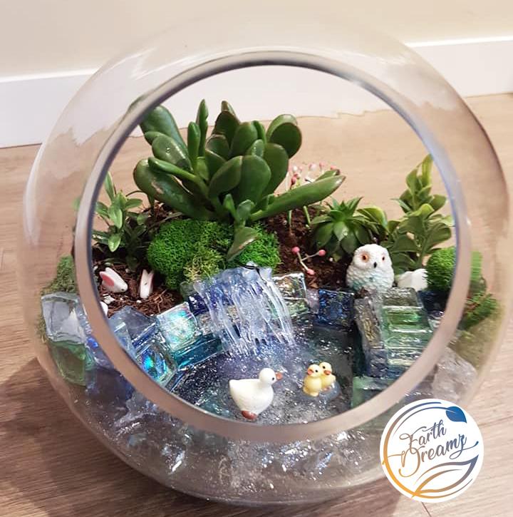 Water Terrariums