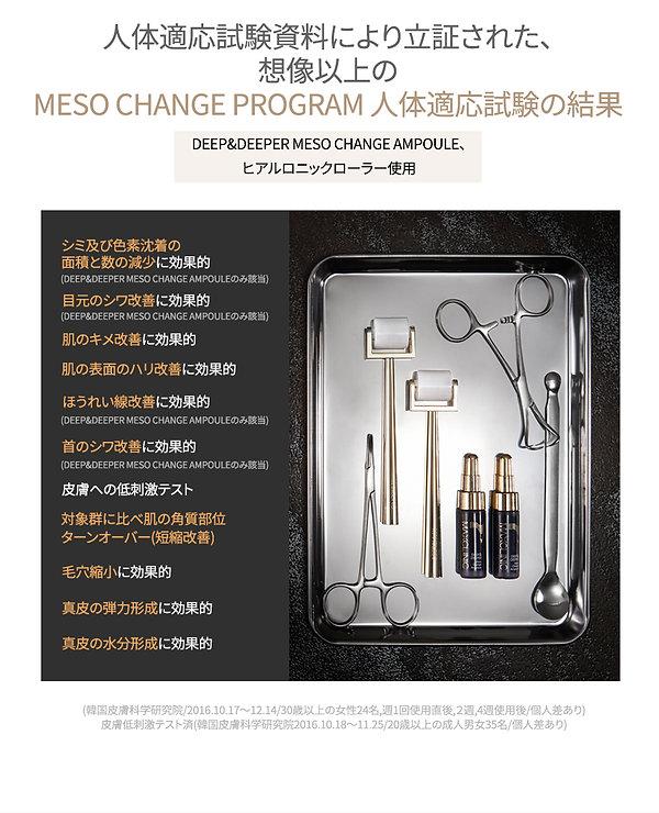 Meso-Change-Program_jp_06.jpg
