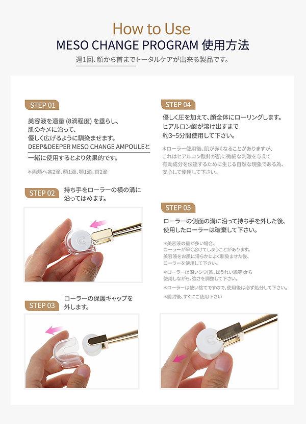 Meso-Change-Program_jp_07.jpg