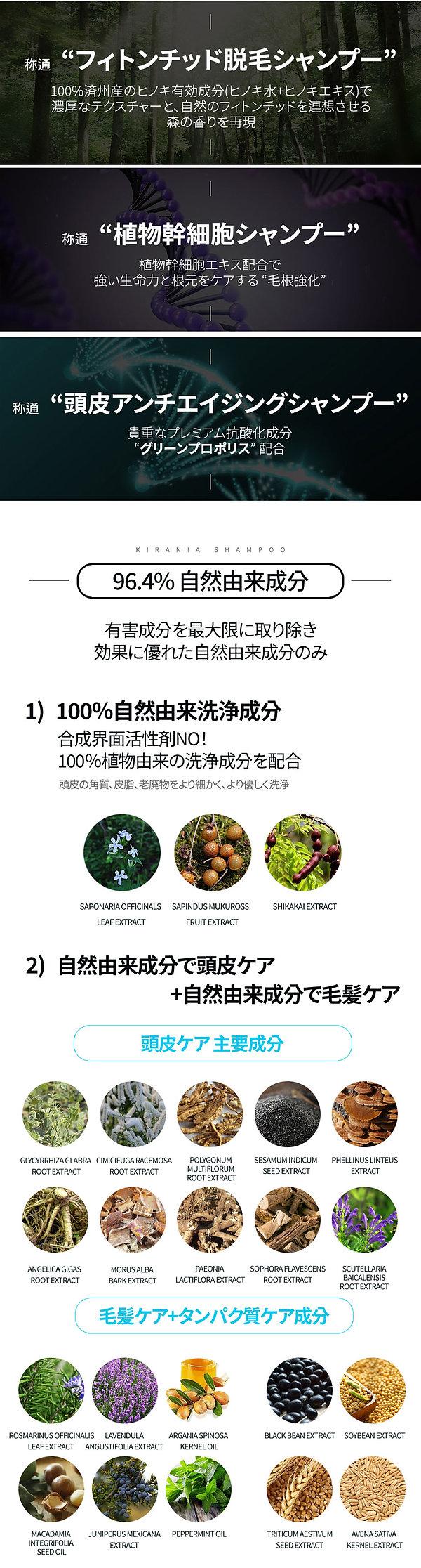 키라니아-(일본어)-4 .jpg