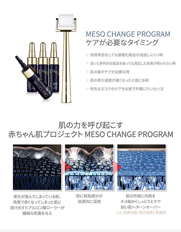 Meso-Change-Program_jp_02.jpg